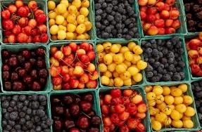 Green City Market Outdoor Season Opens May 7