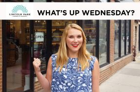 What's Up Wednesday: JAYNE Boutique